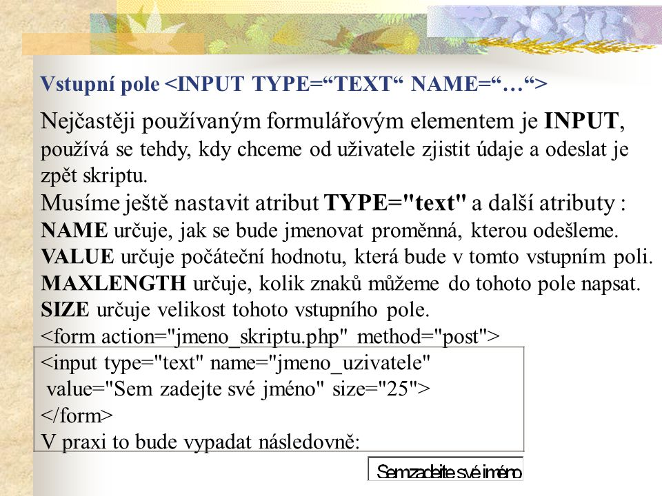 Vstupní pole <INPUT TYPE= TEXT NAME= … >