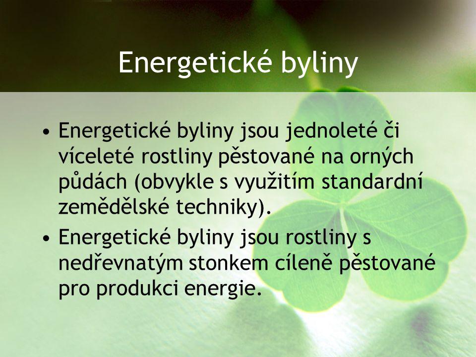 Energetické byliny