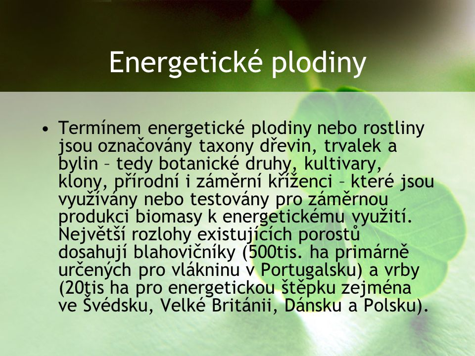 Energetické plodiny