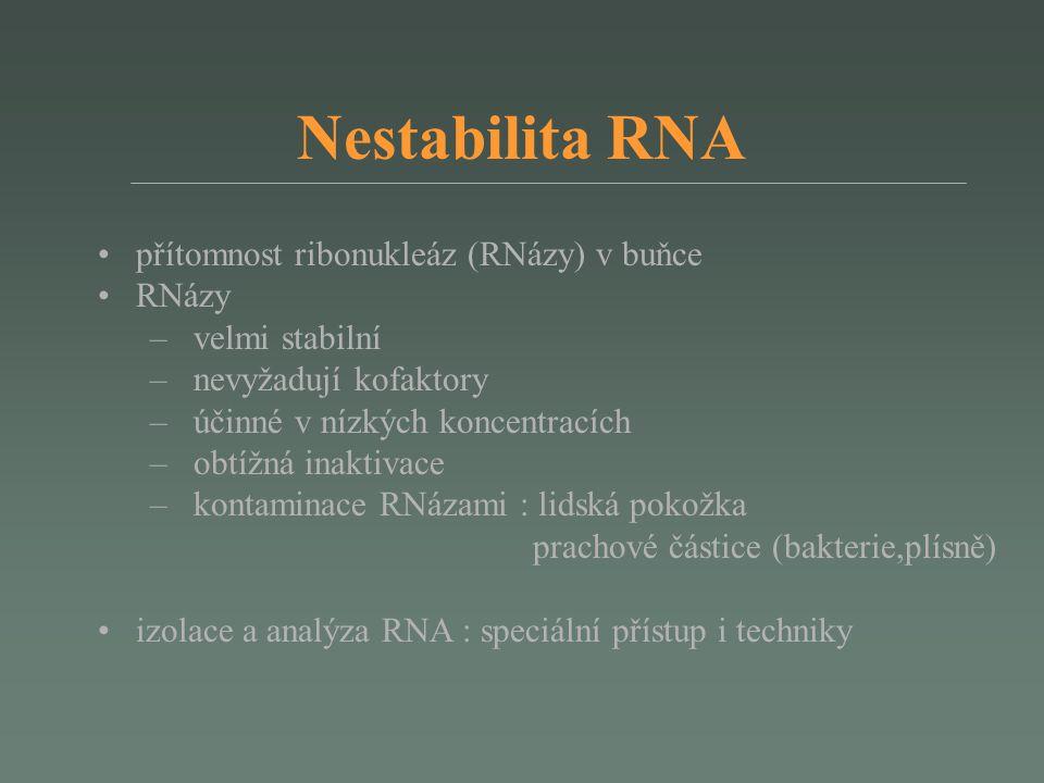 Nestabilita RNA přítomnost ribonukleáz (RNázy) v buňce RNázy