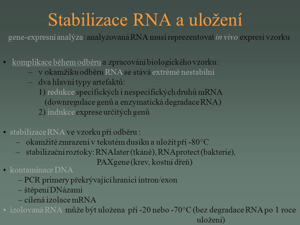 Stabilizace RNA a uložení