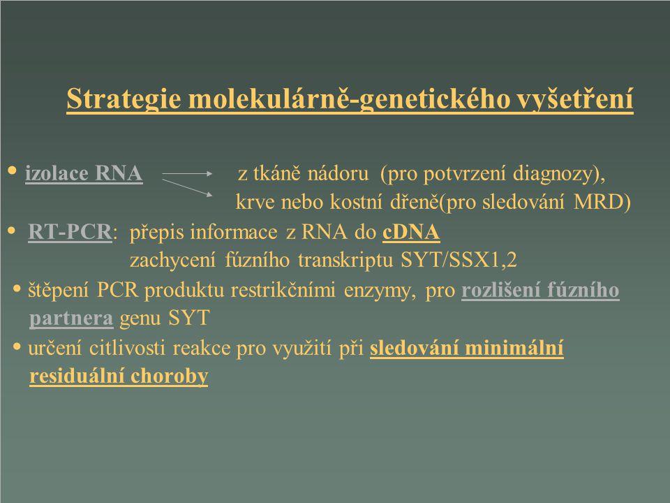 Strategie molekulárně-genetického vyšetření • izolace RNA z tkáně nádoru (pro potvrzení diagnozy), krve nebo kostní dřeně(pro sledování MRD) • RT-PCR: přepis informace z RNA do cDNA zachycení fúzního transkriptu SYT/SSX1,2 • štěpení PCR produktu restrikčními enzymy, pro rozlišení fúzního partnera genu SYT • určení citlivosti reakce pro využití při sledování minimální residuální choroby