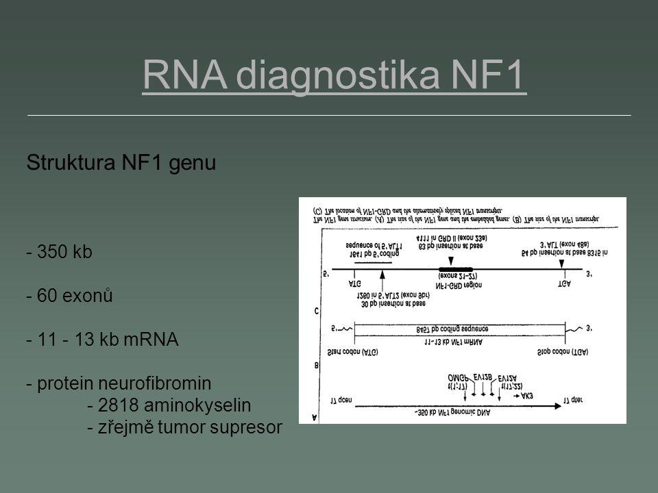 RNA diagnostika NF1