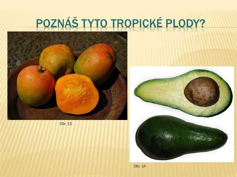 Poznáš tyto Tropické plody