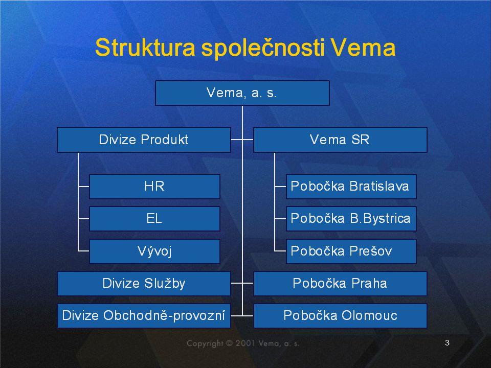 Struktura společnosti Vema