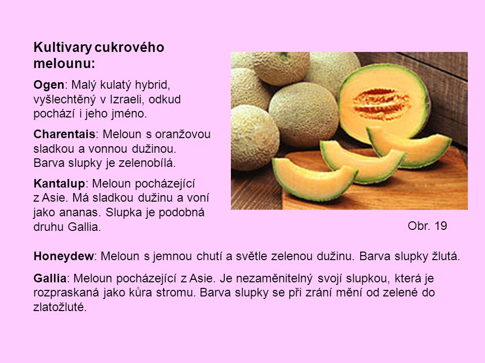 Kultivary cukrového melounu: