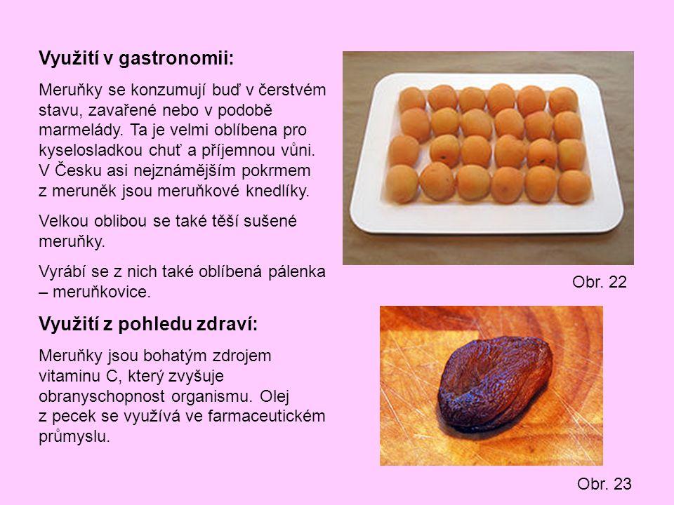 Využití v gastronomii: