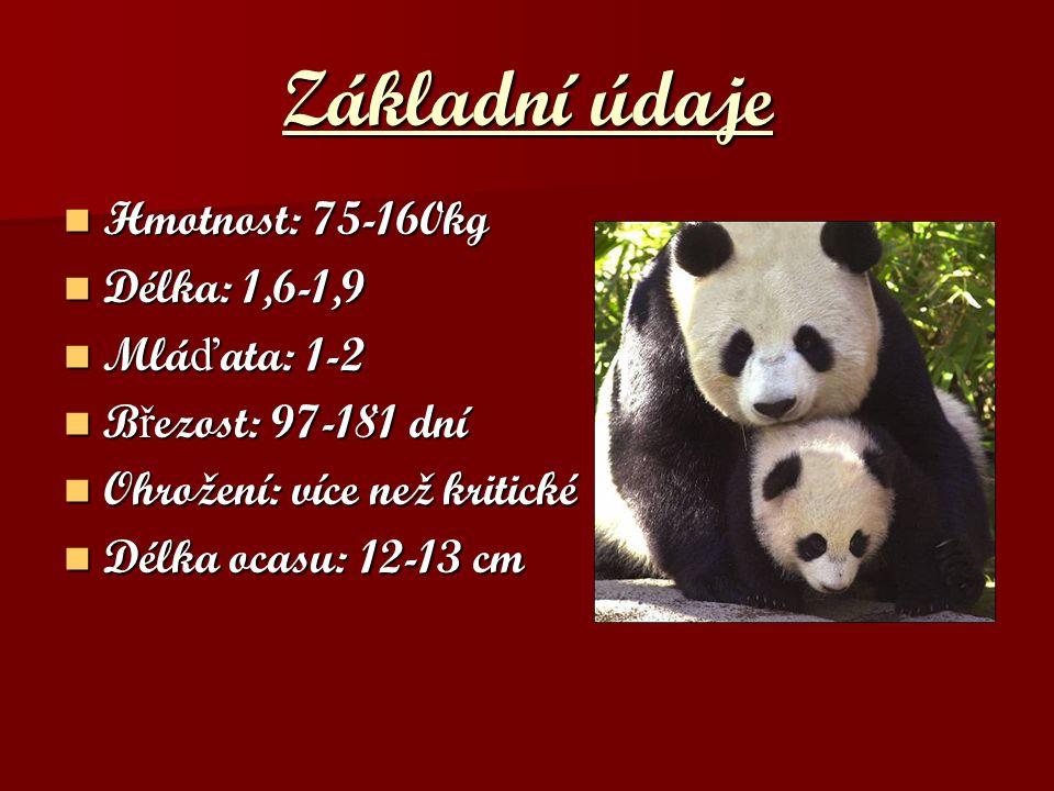 Základní údaje Hmotnost: 75-160kg Délka: 1,6-1,9 Mláďata: 1-2