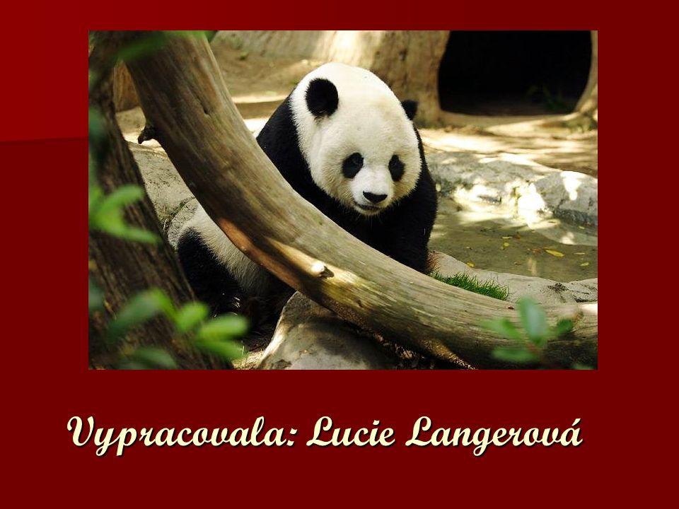 Vypracovala: Lucie Langerová