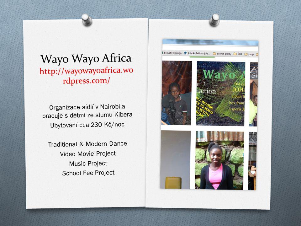 Wayo Wayo Africa http://wayowayoafrica.wordpress.com/