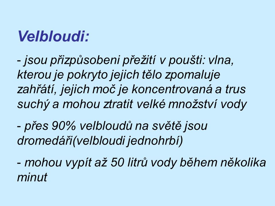 Velbloudi: