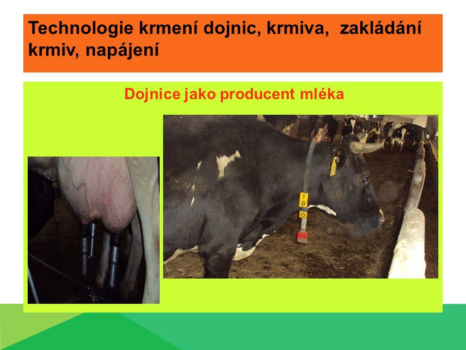 Technologie krmení dojnic, krmiva, zakládání krmiv, napájení