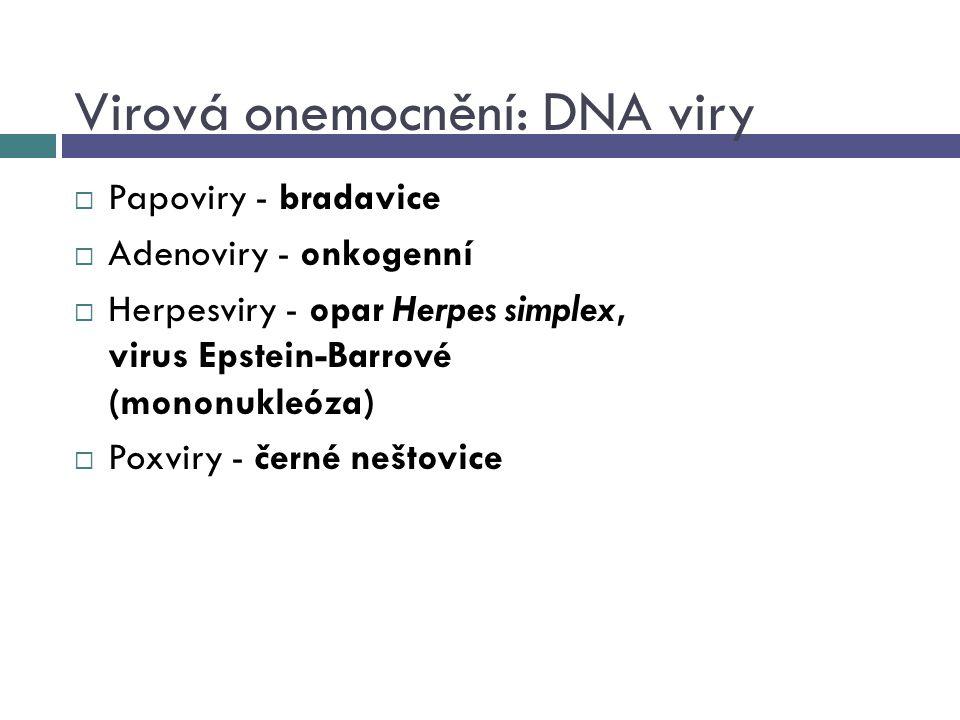 Virová onemocnění: DNA viry