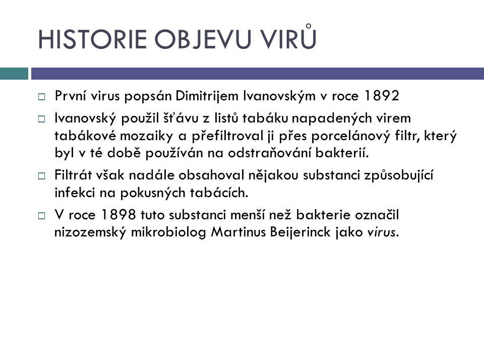 HISTORIE OBJEVU VIRŮ První virus popsán Dimitrijem Ivanovským v roce 1892.