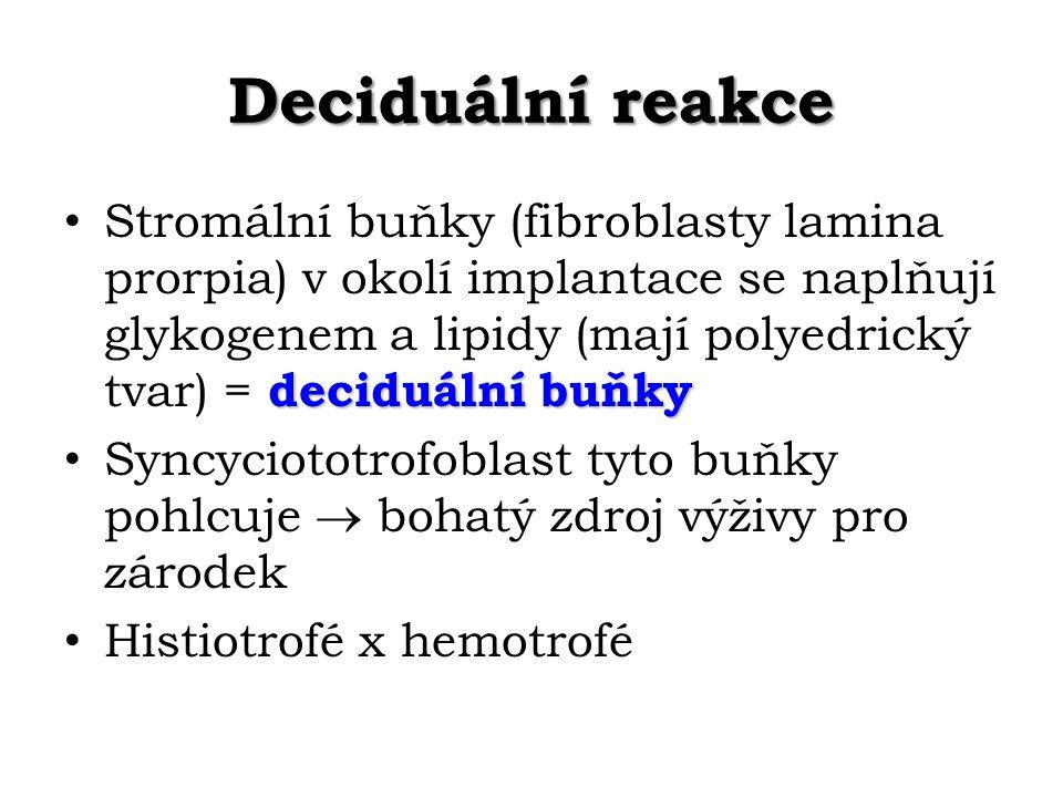 Deciduální reakce