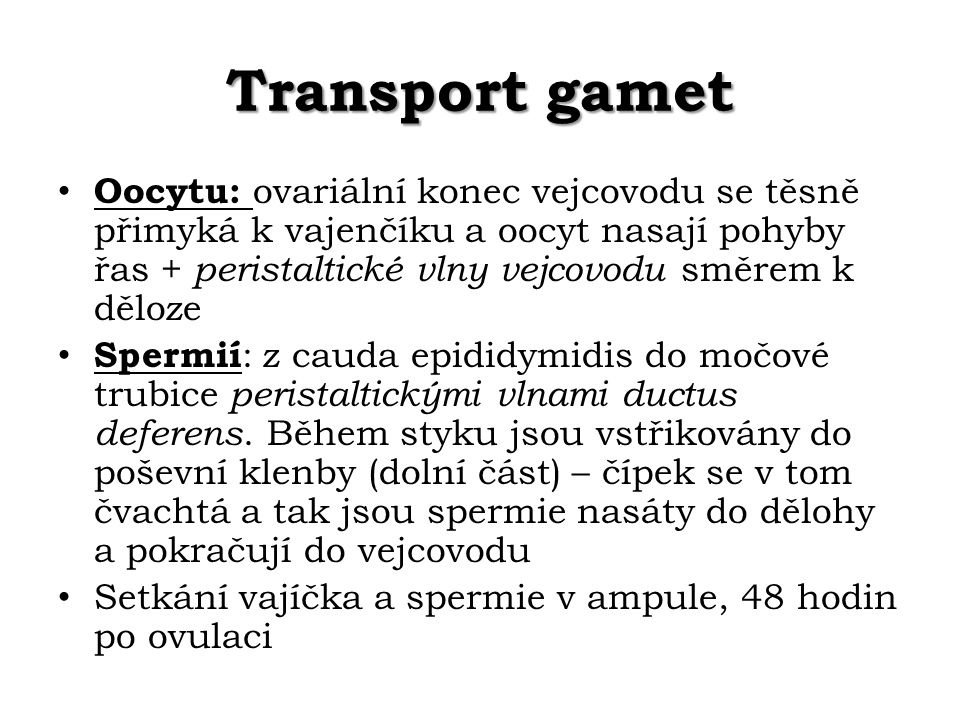Transport gamet