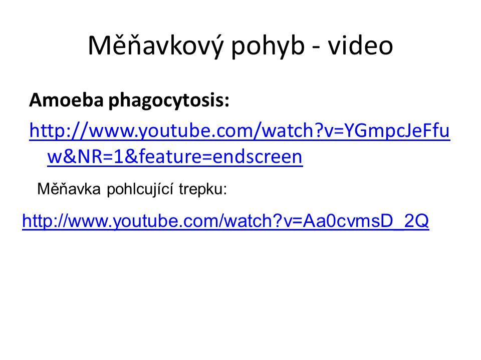 Měňavkový pohyb - video