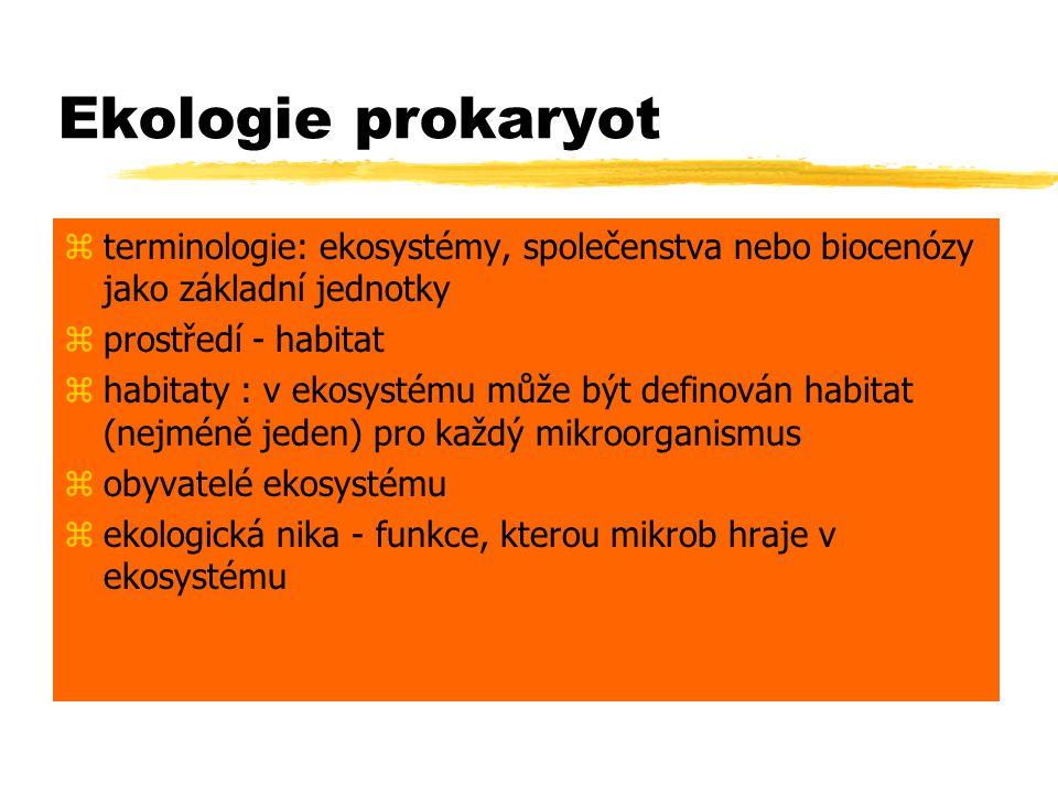 Ekologie prokaryot terminologie: ekosystémy, společenstva nebo biocenózy jako základní jednotky. prostředí - habitat.