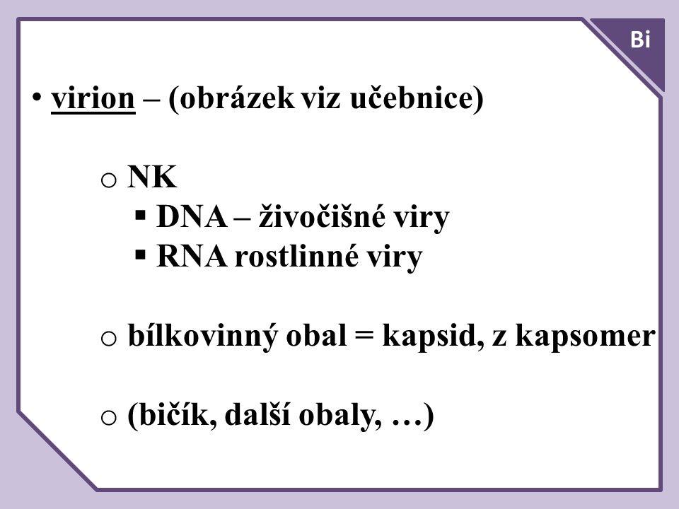 virion – (obrázek viz učebnice) NK DNA – živočišné viry