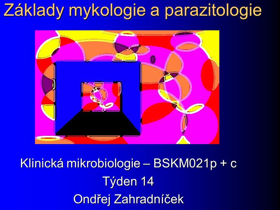 Základy mykologie a parazitologie