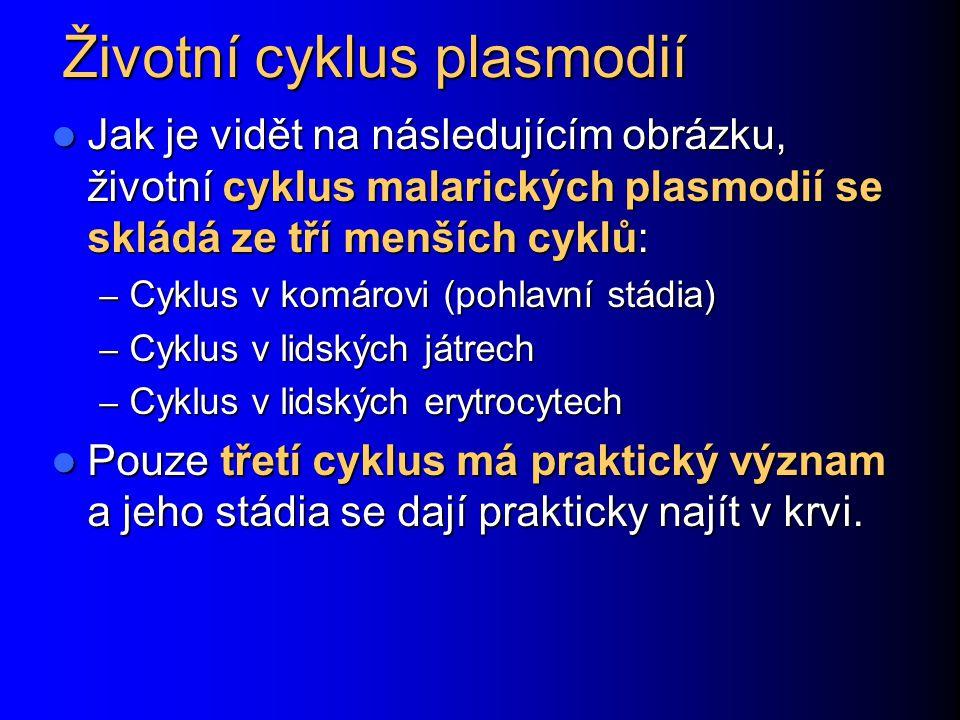 Životní cyklus plasmodií