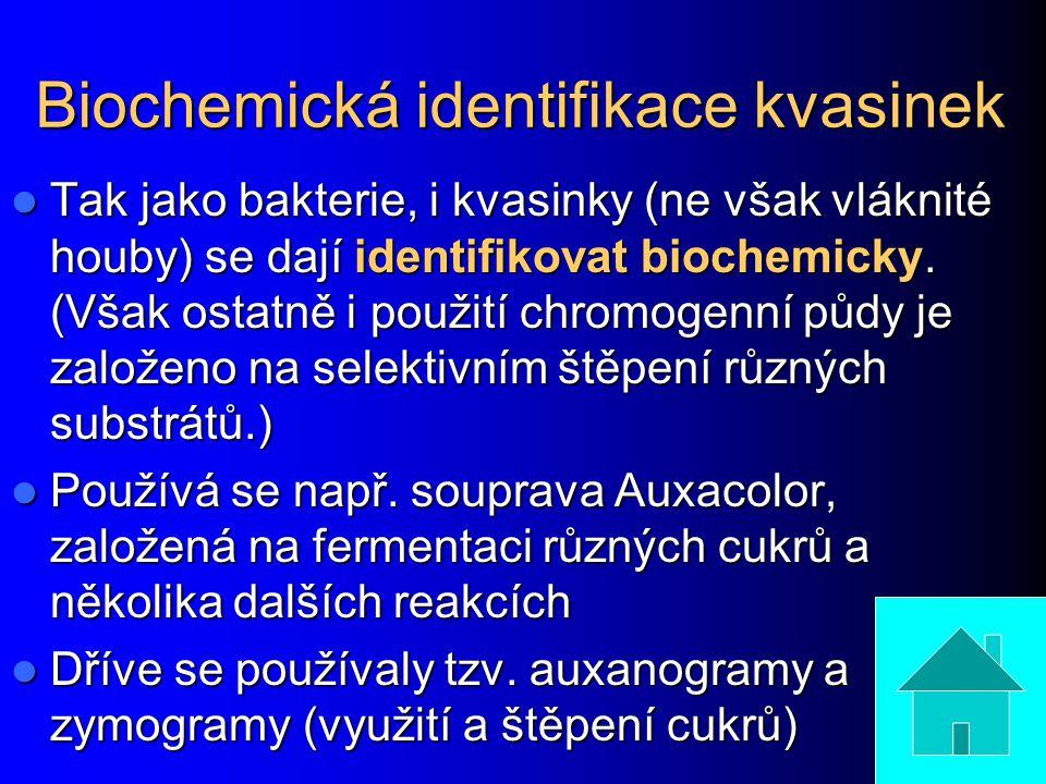 Biochemická identifikace kvasinek