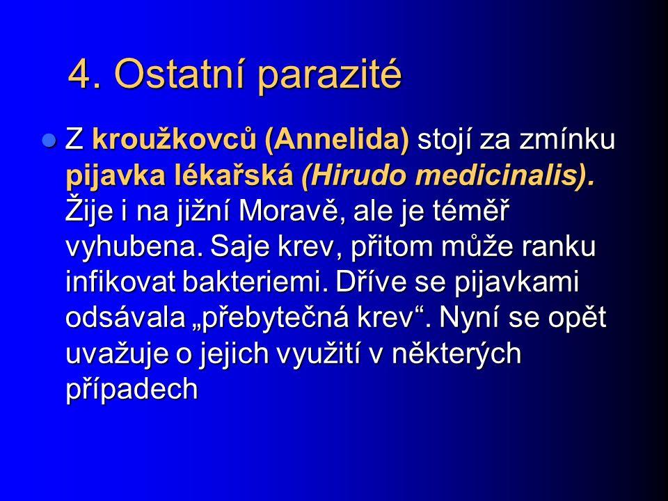4. Ostatní parazité