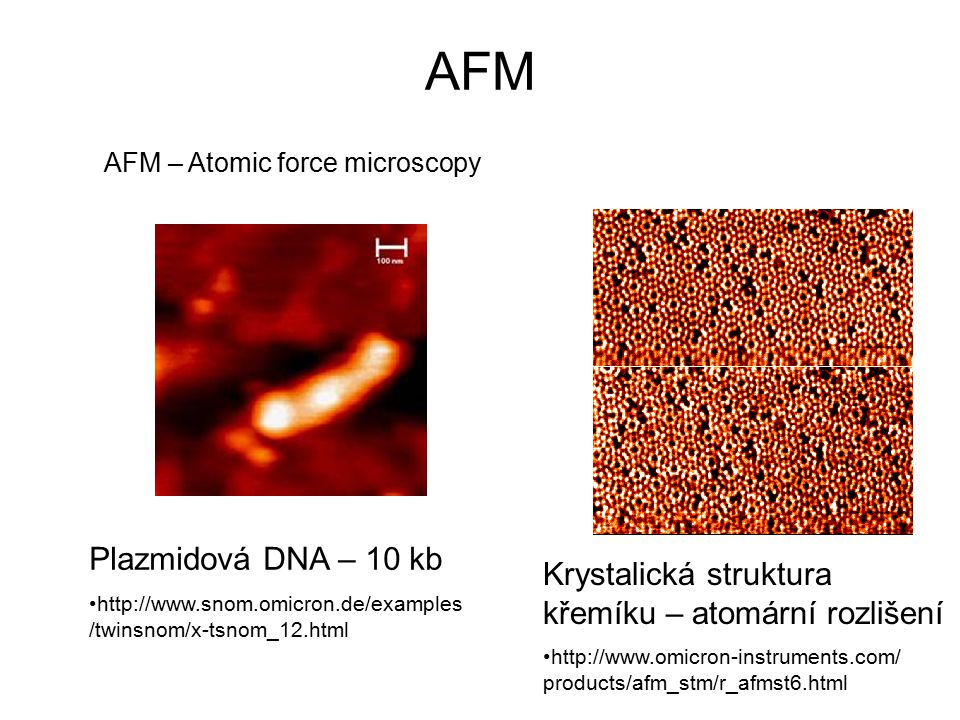 AFM AFM – Atomic force microscopy. Plazmidová DNA – 10 kb.