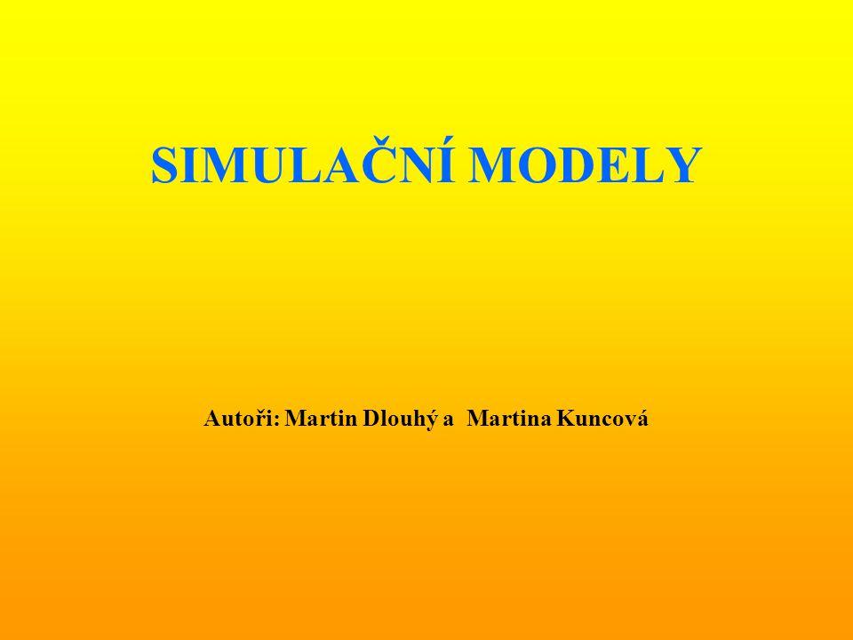 Autoři: Martin Dlouhý a Martina Kuncová