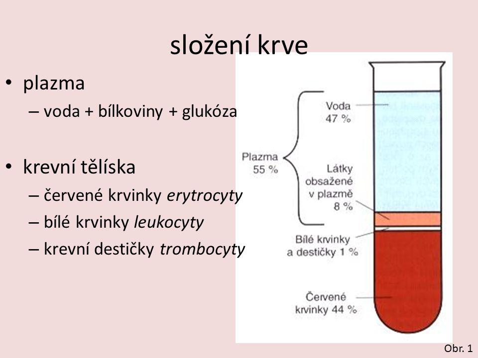 složení krve plazma krevní tělíska voda + bílkoviny + glukóza