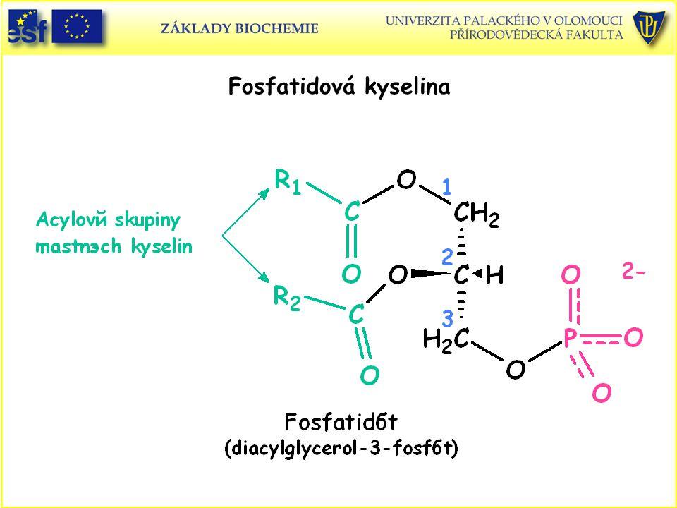 Fosfatidová kyselina Fofatidová kyselina