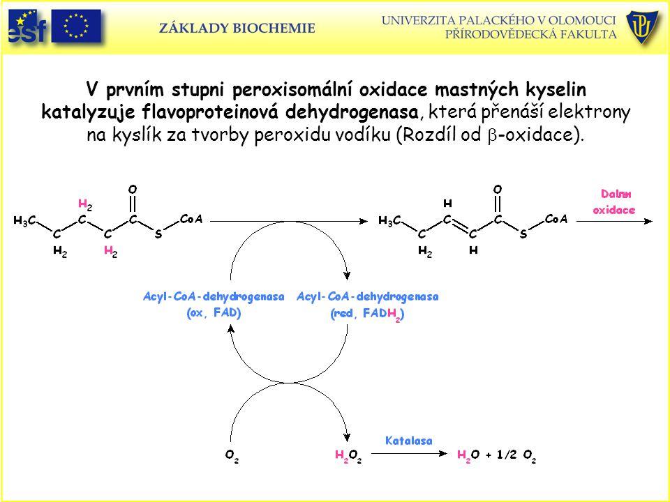 V prvním stupni peroxisomální oxidace mastných kyselin katalyzuje flavoproteinová dehydrogenasa, která přenáší elektrony na kyslík za tvorby peroxidu vodíku (Rozdíl od b-oxidace).