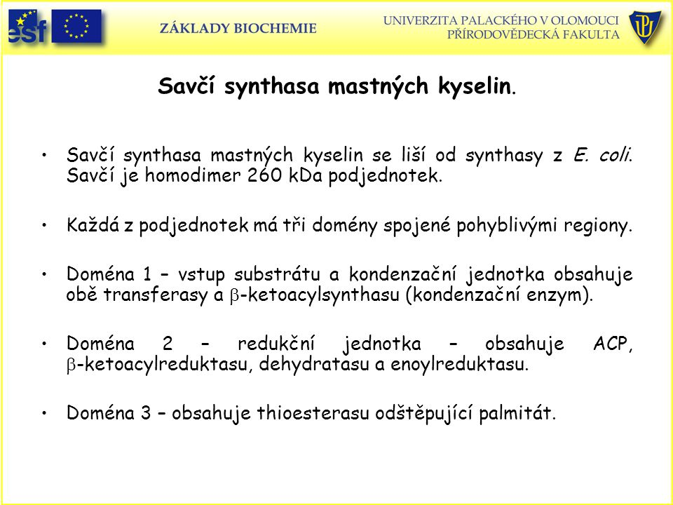 Savčí synthasa mastných kyselin.