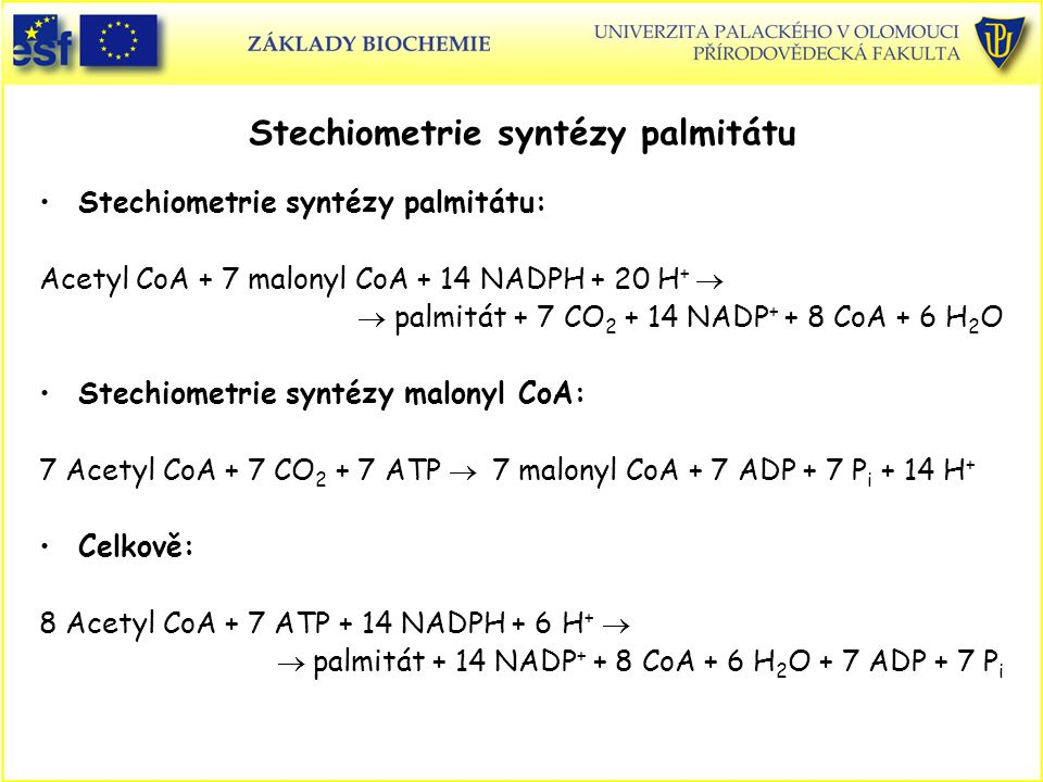 Stechiometrie syntézy palmitátu