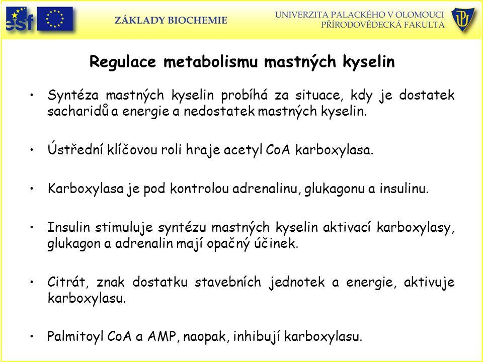 Regulace metabolismu mastných kyselin