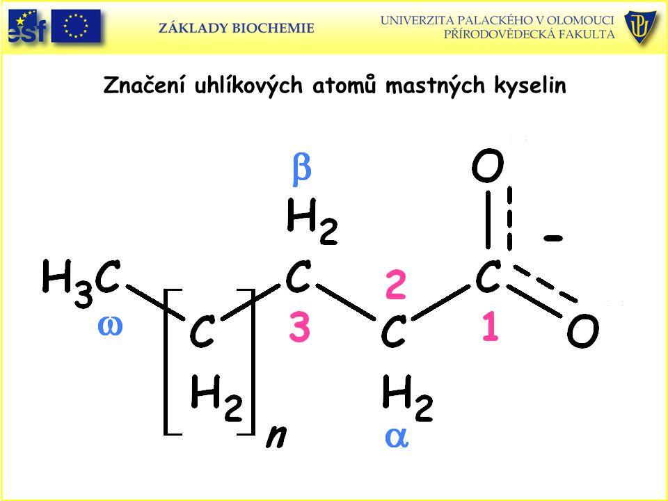 Značení uhlíkových atomů mastných kyselin