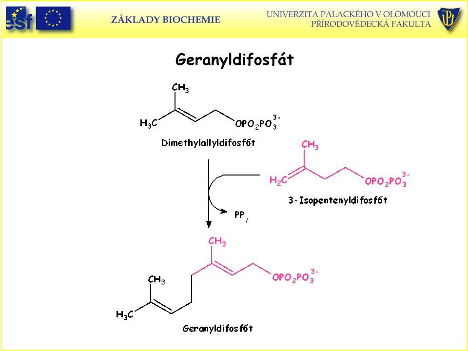 Geranyldifosfát Geranyldifosfát