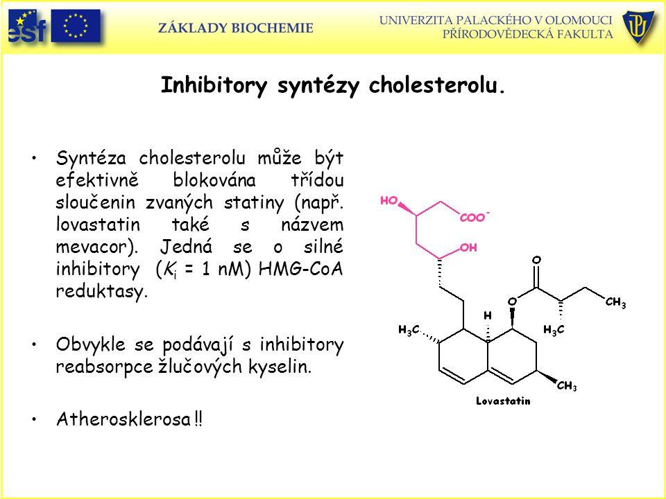 Inhibitory syntézy cholesterolu.