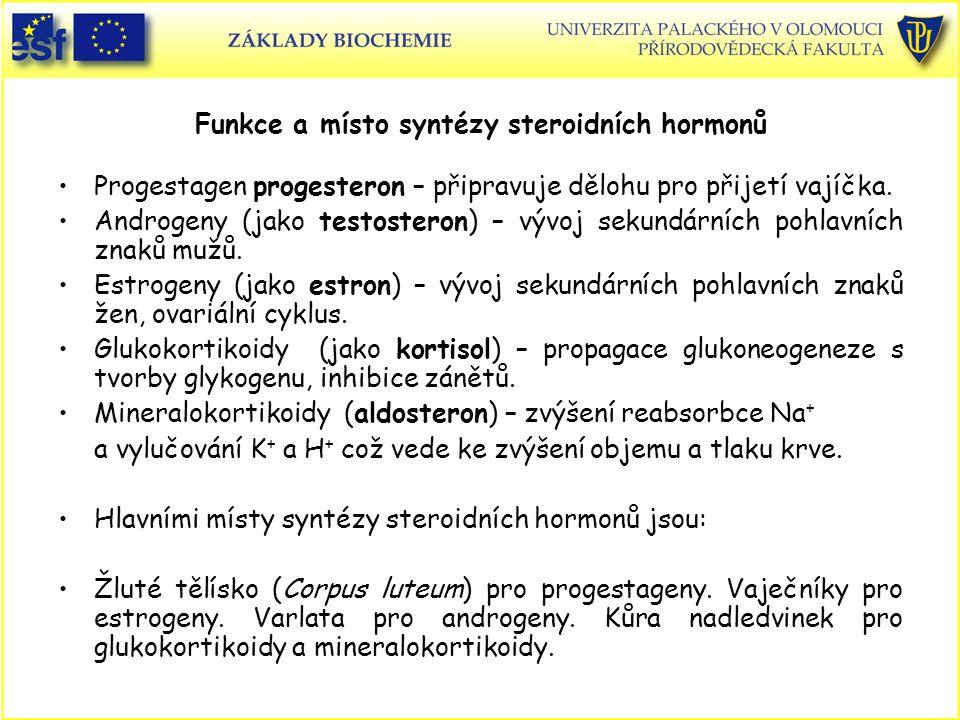 Funkce a místo syntézy steroidních hormonů