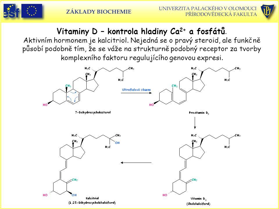 Vitaminy D – kontrola hladiny Ca2+ a fosfátů