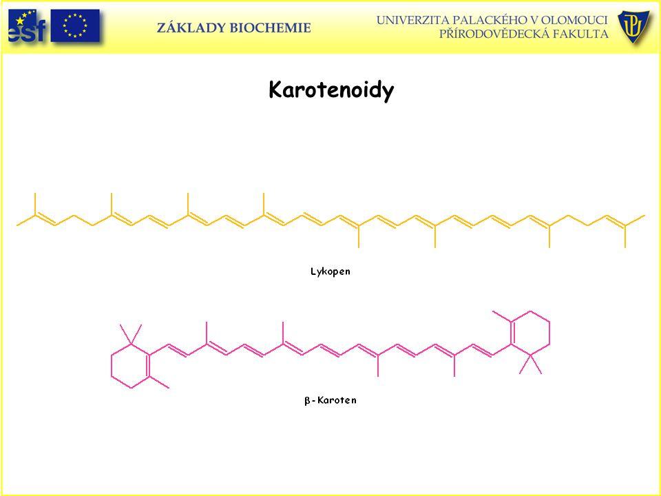 Karotenoidy Lykopen Beta-karoten