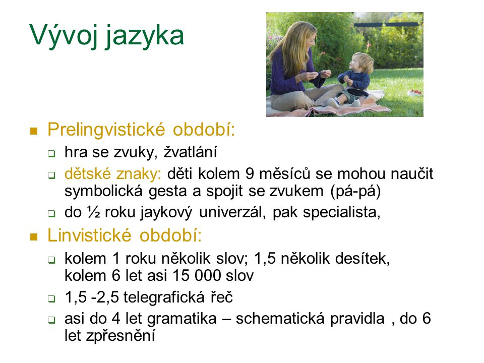Vývoj jazyka Prelingvistické období: Linvistické období: