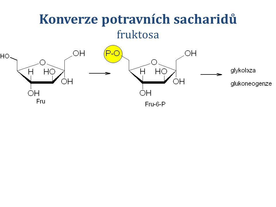 Konverze potravních sacharidů fruktosa