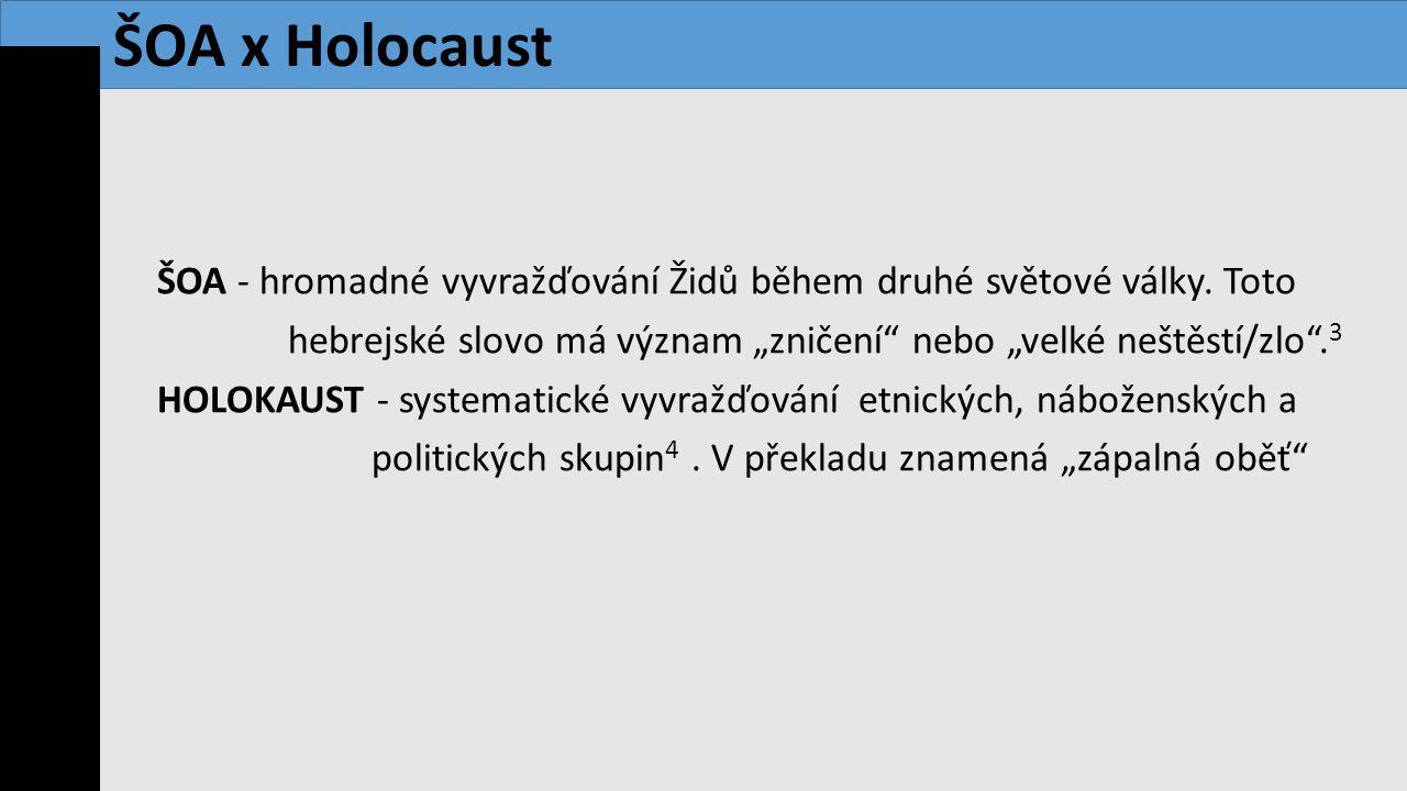 ŠOA x Holocaust