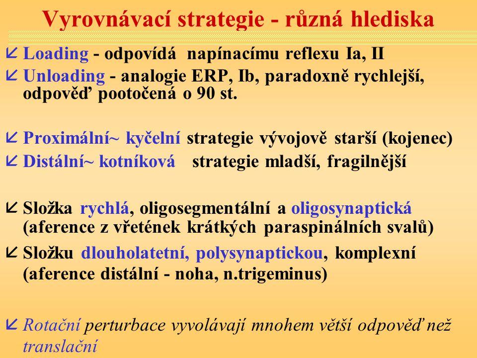 Vyrovnávací strategie - různá hlediska