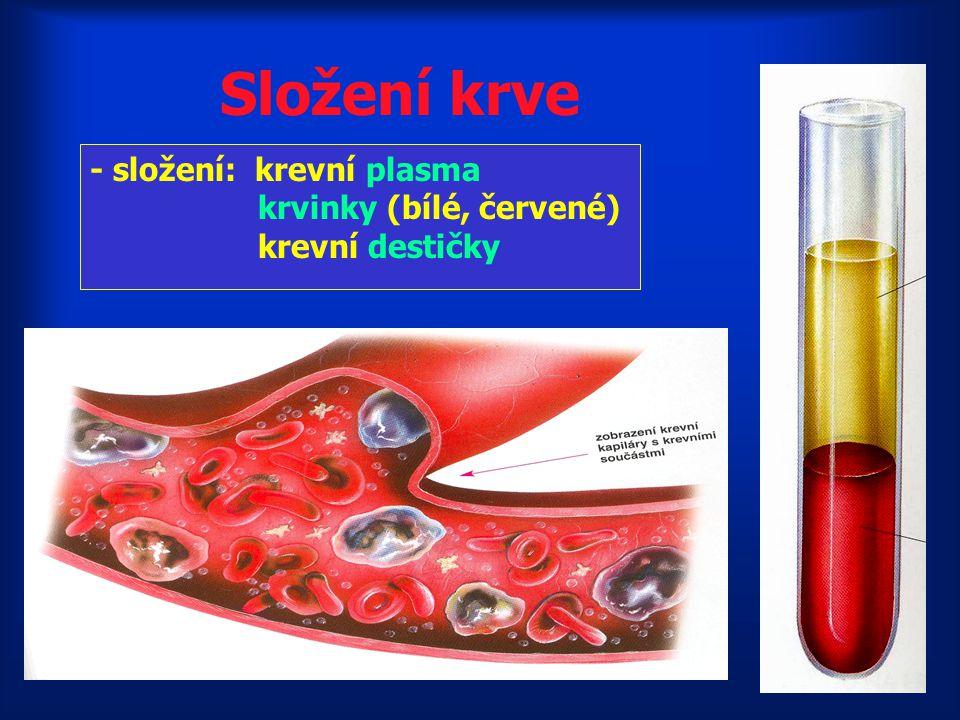 Složení krve - složení: krevní plasma krvinky (bílé, červené)