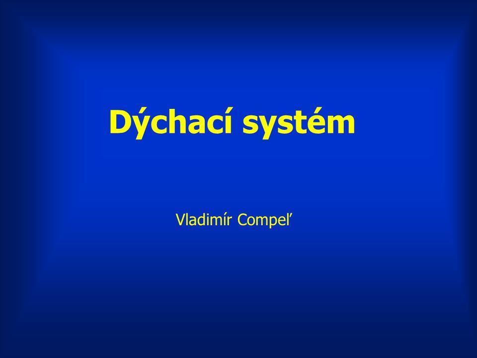 Dýchací systém Vladimír Compeľ