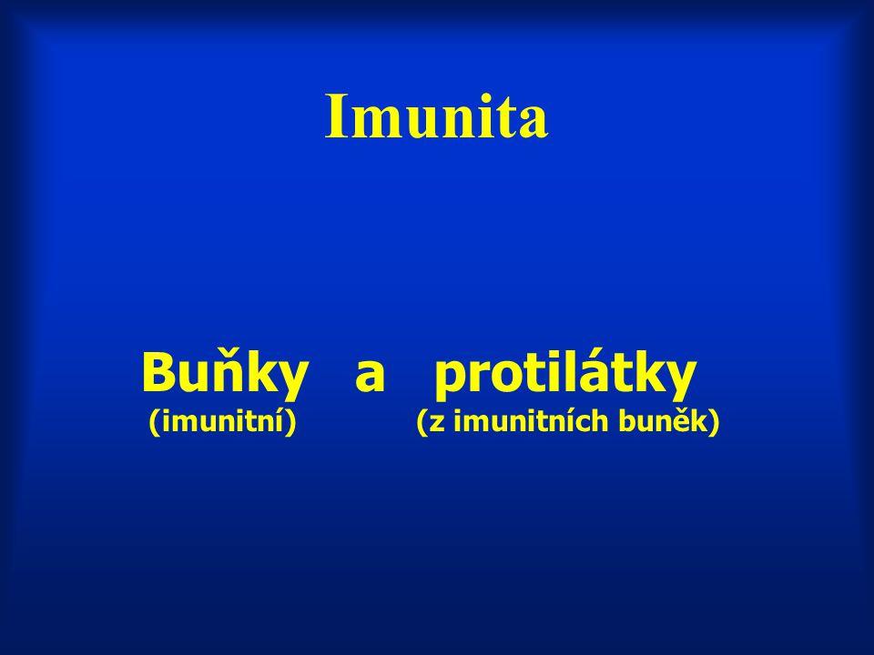 Imunita Buňky a protilátky (imunitní) (z imunitních buněk)