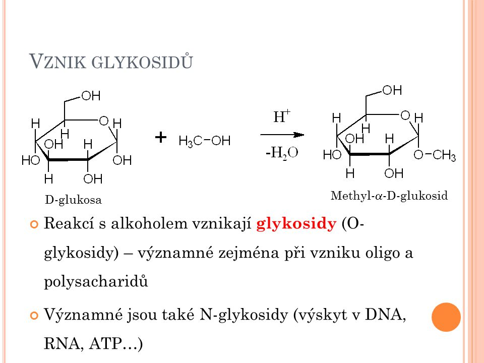 Vznik glykosidů Methyl--D-glukosid. D-glukosa.