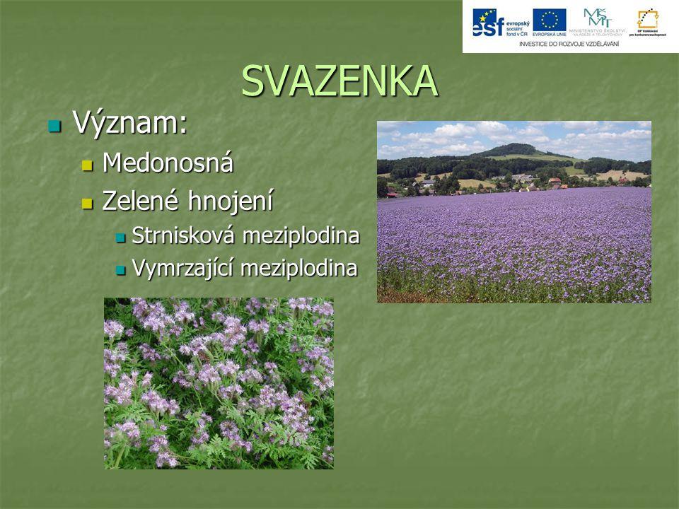 SVAZENKA Význam: Medonosná Zelené hnojení Strnisková meziplodina